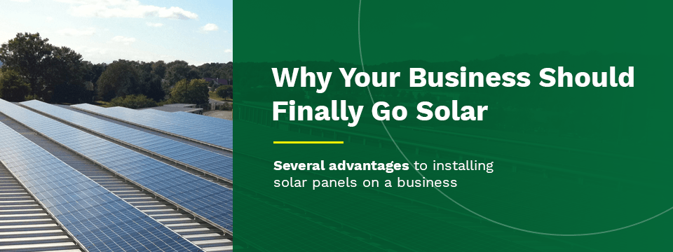 why your business should switch to solar