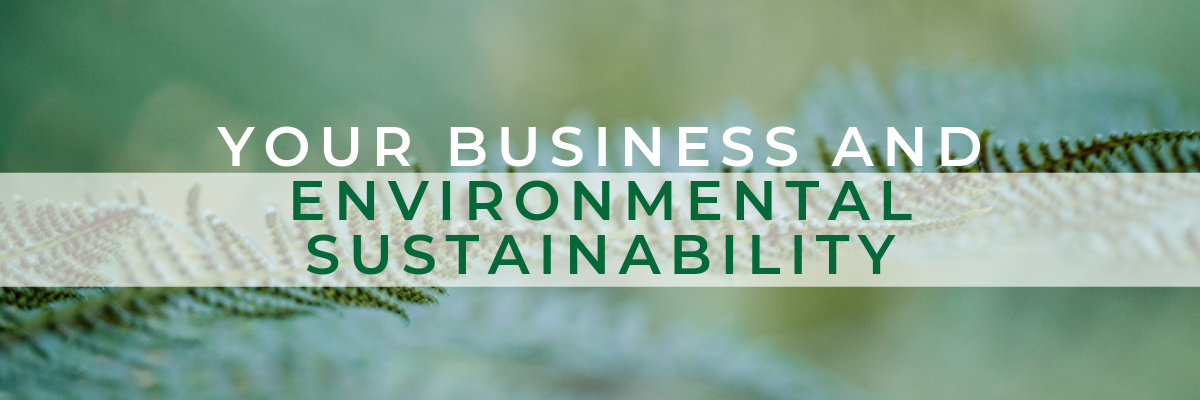 make your business environmentally sustainable